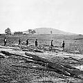 Civil War: Graves, 1862 by Granger