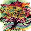 Clad In Color by Brenda Owen