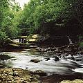 Clare River, Clare Glens, Co Tipperary by The Irish Image Collection
