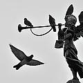 Clarinet Statue by CarlosAlbertoPhoto