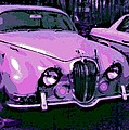 Classic In Pink by George Pedro