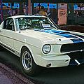 Classy Mustang by Randy Harris