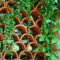 Clay Pattern Wall With Vines by Nancy Mueller
