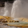 Clepsydra Geyser Yellowstone National Park by Bruce Gourley
