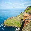 Cliff Of Moher 22 by Douglas Barnett