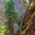 Cliffhanger by JP  McKim