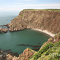Cliffs On Grand Manan Island by Ted Kinsman