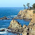 Cliffside Oceanview by Athena Mckinzie