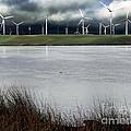 Climate Changed Storm by Afroditi Katsikis