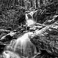 Climbing Up Broads Fork Bw by Mitch Johanson
