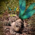 Clippy's Spring Wings by Kathleen Horner