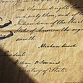 Close-up Of Emancipation Proclamation by Todd Gipstein