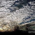Cloud Blanket Sunset by Susan Stevenson