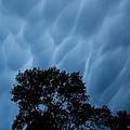 Cloud Dream by Jeff Moose