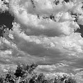 Clouds Rising Bw Palm Springs by William Dey