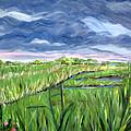 Cloudy Marsh by Clara Sue Beym