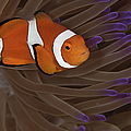 Clownfish In Purple Tip Anemone by Todd Winner