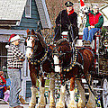 Clydesdales by Jenny Gandert
