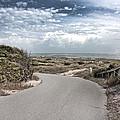 Coastal Bend by Betsy Knapp