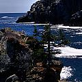 Coastal Maine by Skip Willits