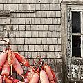 Coastal Shanty And Buoys. by John Greim