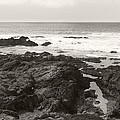 Coastal Tide by Kathleen Grace