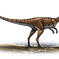 Coelophysis Bauri, A Prehistoric Era by Sergey Krasovskiy