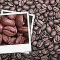 Coffee Beans Polaroid by Jane Rix