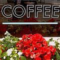 Coffee by Cynthia Amaral
