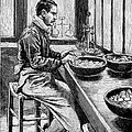 Coin Production, 19th Century by