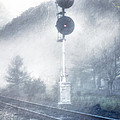 Cold And Foggy by Kathy Jennings