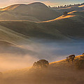 Cold Fog At Sunrise by Marc Crumpler