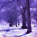 Color Infrared Winter Landscape by Angela Rose
