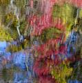 Color Palette by Susan Candelario
