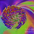 Color Splash by Cindy Manero