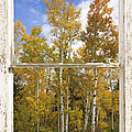 Colorado Autumn Aspens Picture Window View by James BO Insogna