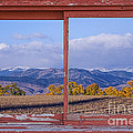 Colorado Country Red Rustic Picture Window Frame Photo Art by James BO Insogna