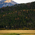 Colorado Fall by Marilyn Hunt