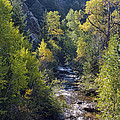 Colorado Left Hand Creek Boulder County Autumn View by James BO  Insogna