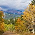 Colorado Rocky Mountain Autumn Scenic Drive by James BO Insogna