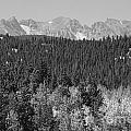 Colorado Rocky Mountain Continental Divide View Bw by James BO Insogna