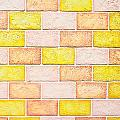 Colorful Brick Wall by Tom Gowanlock