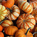 Colorful Gourds by Richard Bryce and Family