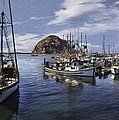 Colorful Morro Harbor by Sharon Foster
