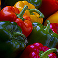 Colorful Peppers by Frederic A Reinecke