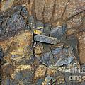 Colorful Stone Wall by Michael Waters