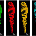 Colorful Tropical Parrot Abstract Parrot Ink Sketch Digital And Original Art By Madart by Megan Duncanson