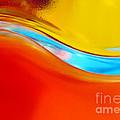 Colorful Wave by Carlos Caetano