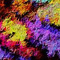 Colorosity by Paul Wear