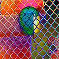 Colors Hiding Behind Fence by Lenore Senior